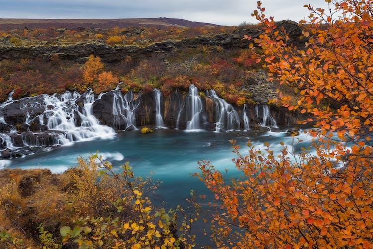Bei dem Wasserfall Hraunfossar in Westisland handelt es sich eigentlich um mehrere kleine Flüsse.