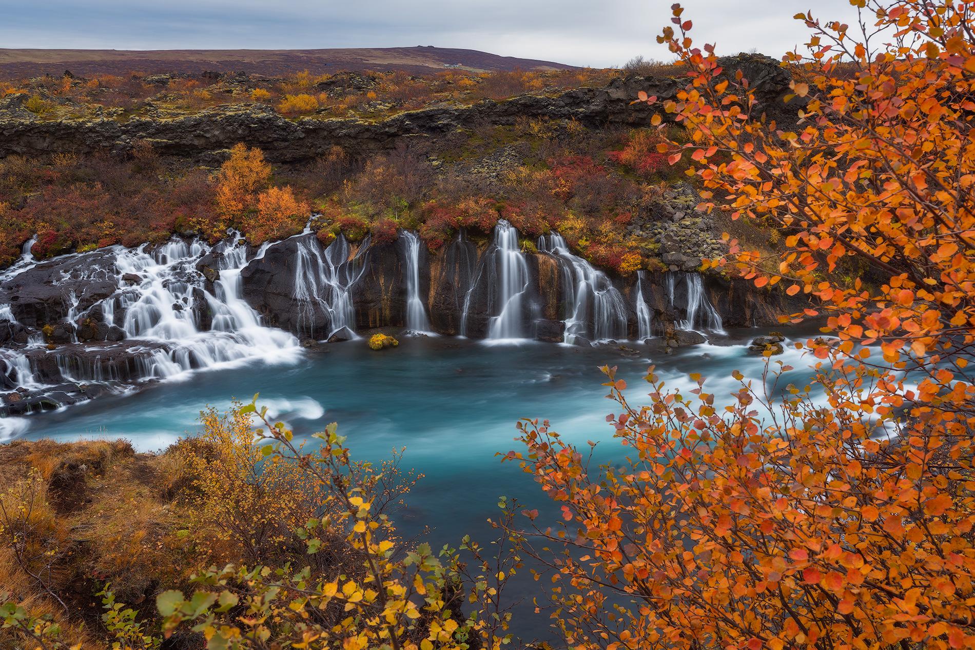 La cascade Hraunfossar est située à l'ouest de l'Islande et consiste en une longue série de petits ruisseaux.