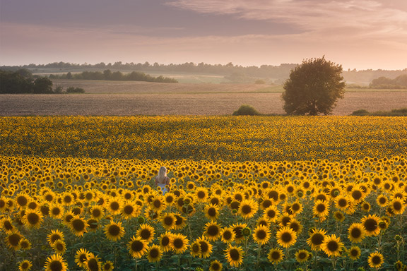 Provence Paradise | 6 Day Photo Tour in France - day 1