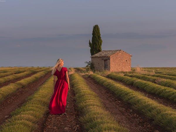 Daniel Kordan Photography
