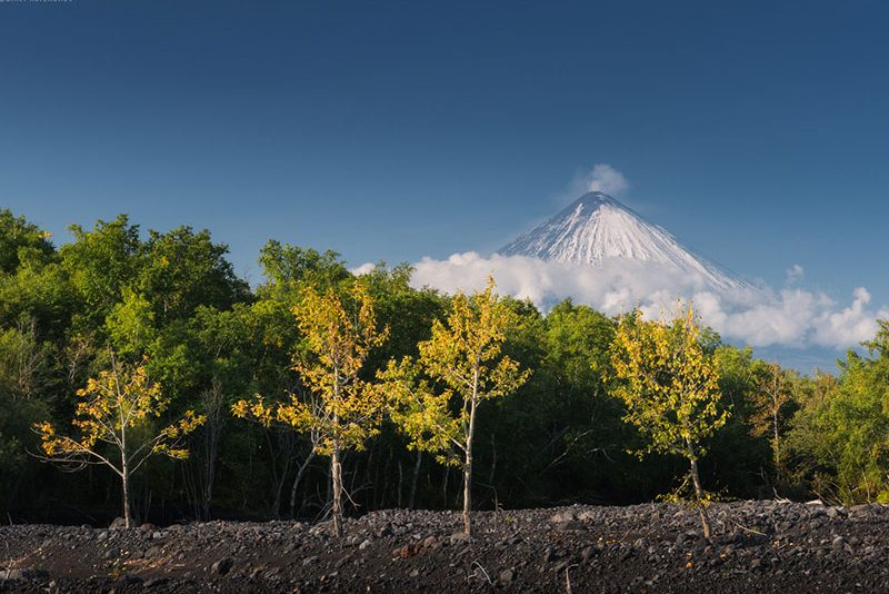 Russia's Kamchatka Peninsula | 15 Day Photo Tour - day 9
