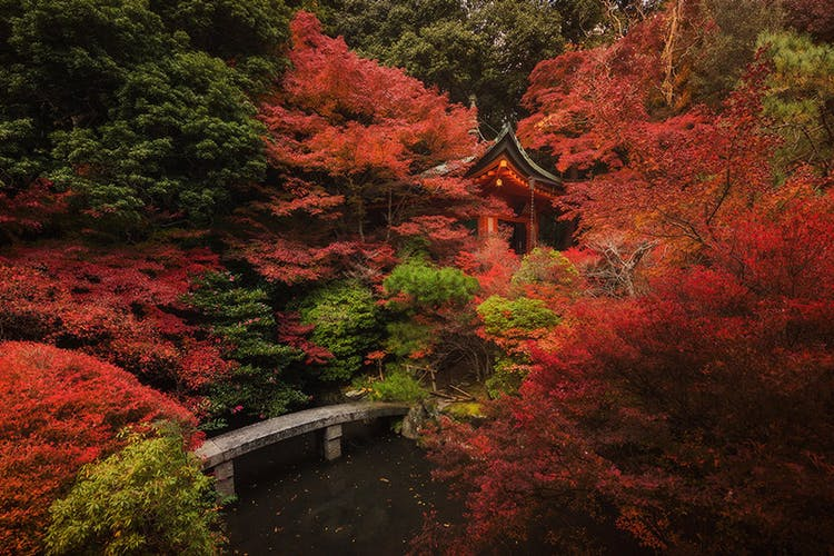 Kyoto is a land of throwbacks to a simpler time in Japanese history.