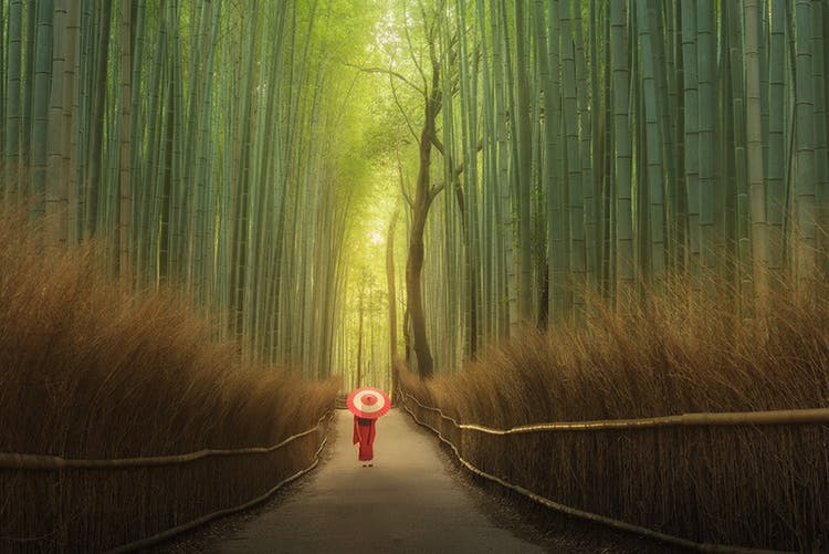 Three of the most spectacular locations in Japan are Tokyo, Kyoto and Mount Fuji.