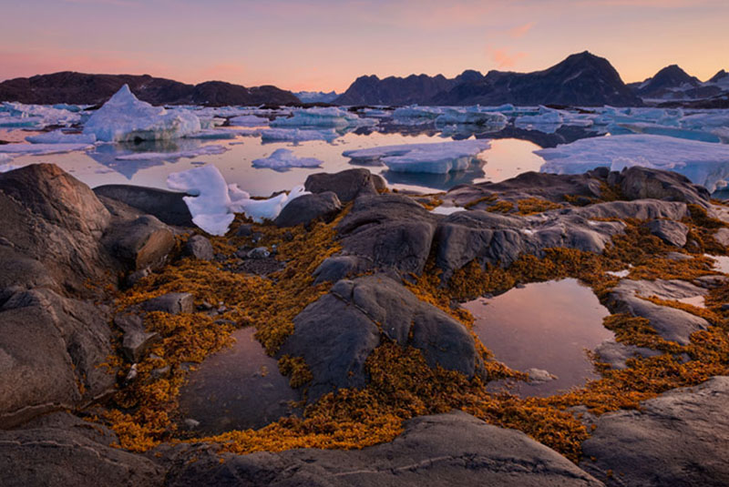 12 Day Greenland Photo Expedition - day 5