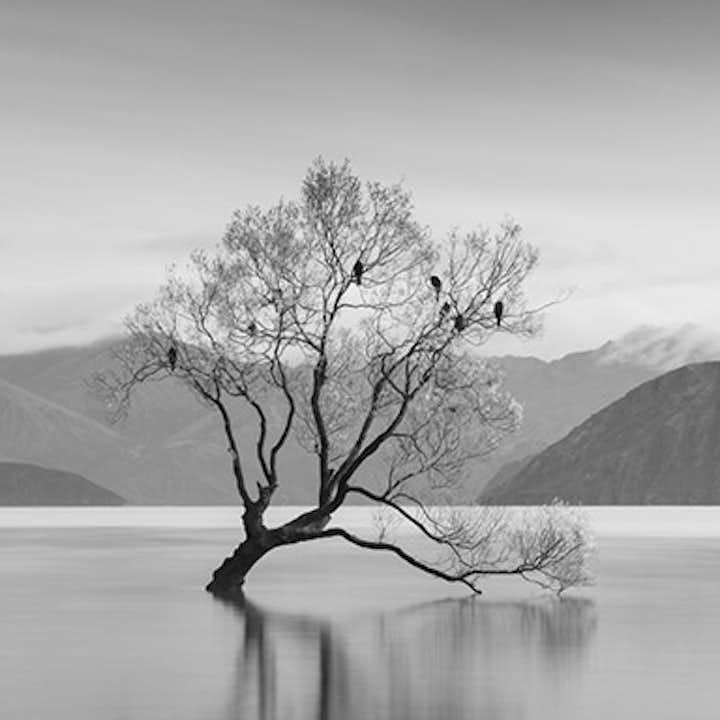 New Zealand Spring Photo Workshop