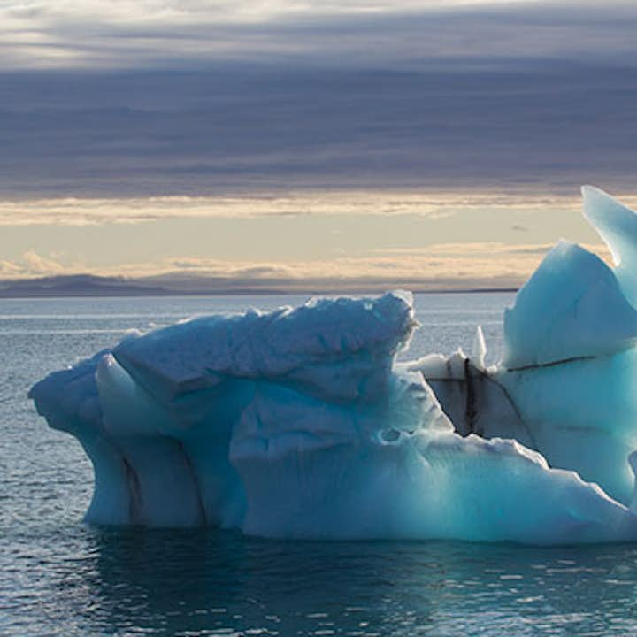 Arctic Photography Tour   Sailing Adventure in Svalbard