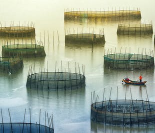 Culture & Landscape Photography Tour in China's Fujian Province