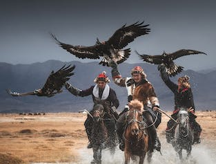 11 Day Mongolia Photography Tour width=