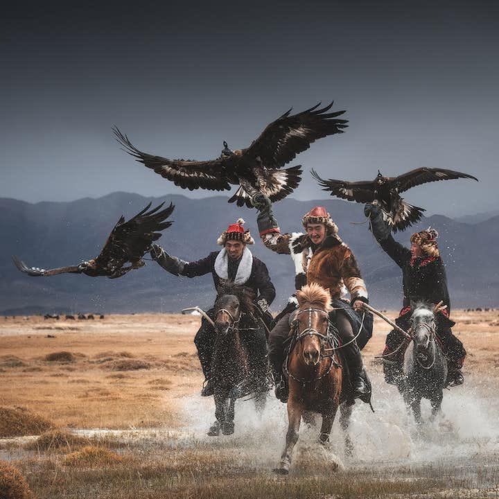 11 Day Mongolia Photography Tour