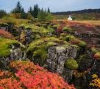 Moosbedeckte Steine und die Thingvellir-Kirche im Hintergrund.