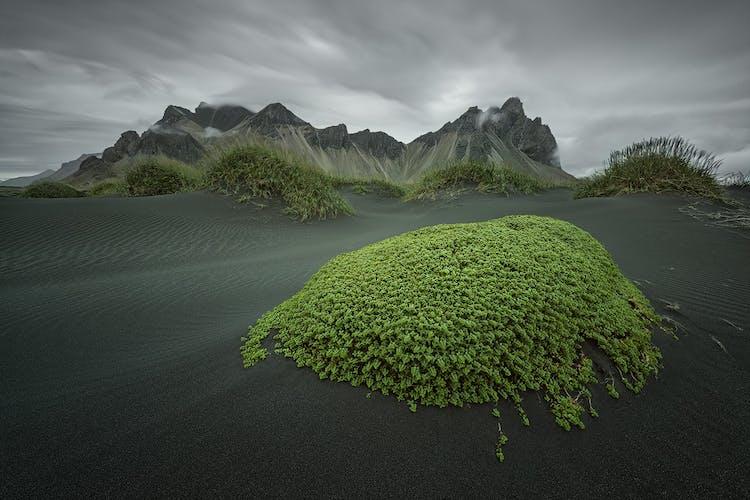 位于斯托克角(Stokksnes)半岛的Vestrahorn山因其独特的角度和形状而深受摄影师的喜爱,在任何时候,都能拍出令人印象深刻的照片。