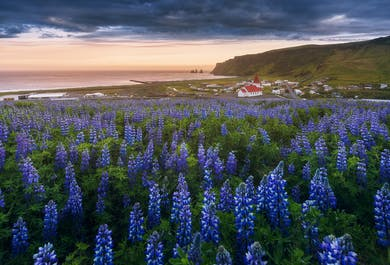 3 Day Summer Photo Workshop on the South Coast of Iceland