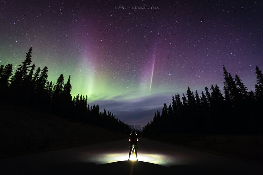 Northern Lights in Canada - Photo by Dani Lefrancois