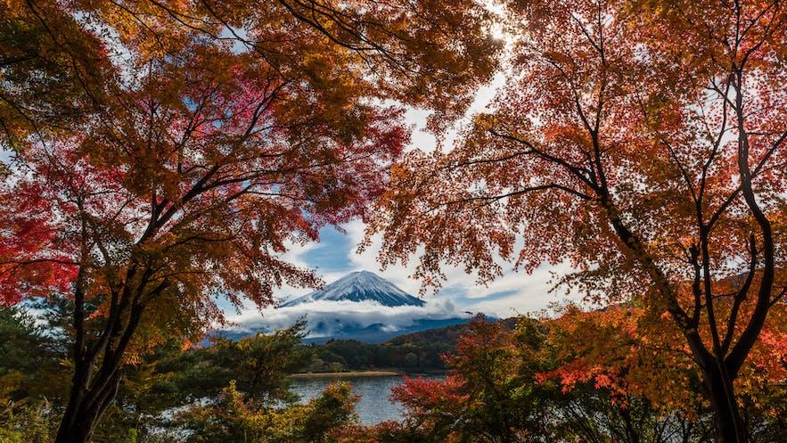 Mt Fuji - Photo by Marc Pelissier