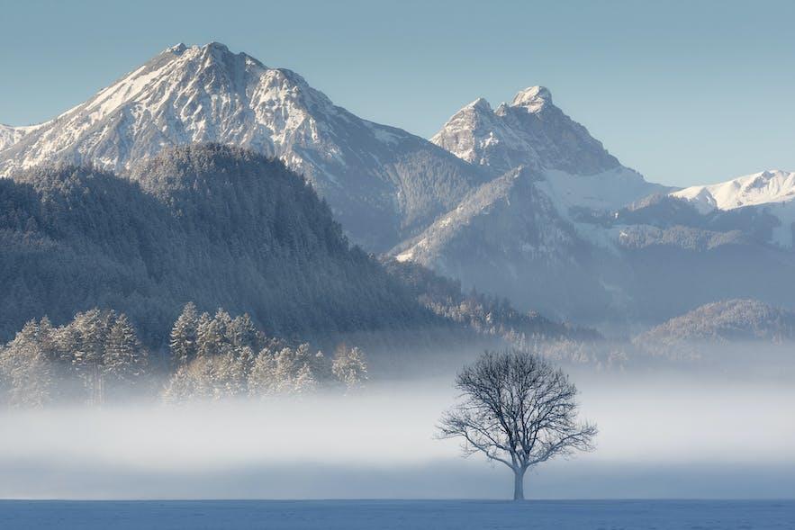 Bavarian Fairytale. Photo by: 'Serena Dzenis'.