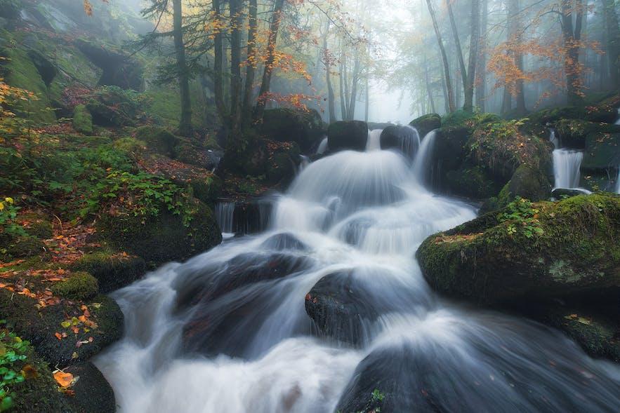 Auvergne. Photo by: 'Julien Grondin'.