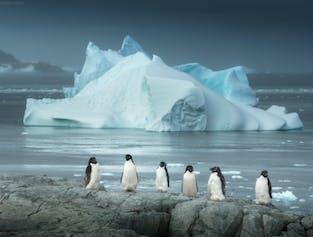 Antarctica Photography Expedition 2022 with Daniel Kordan width=