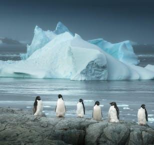 Antarctica Photography Expedition 2022 with Daniel Kordan