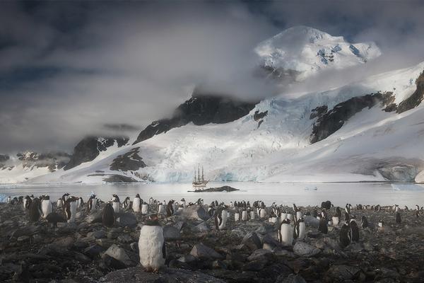 Antarctica Photography Expedition 2021 with Daniel Kordan - day 11