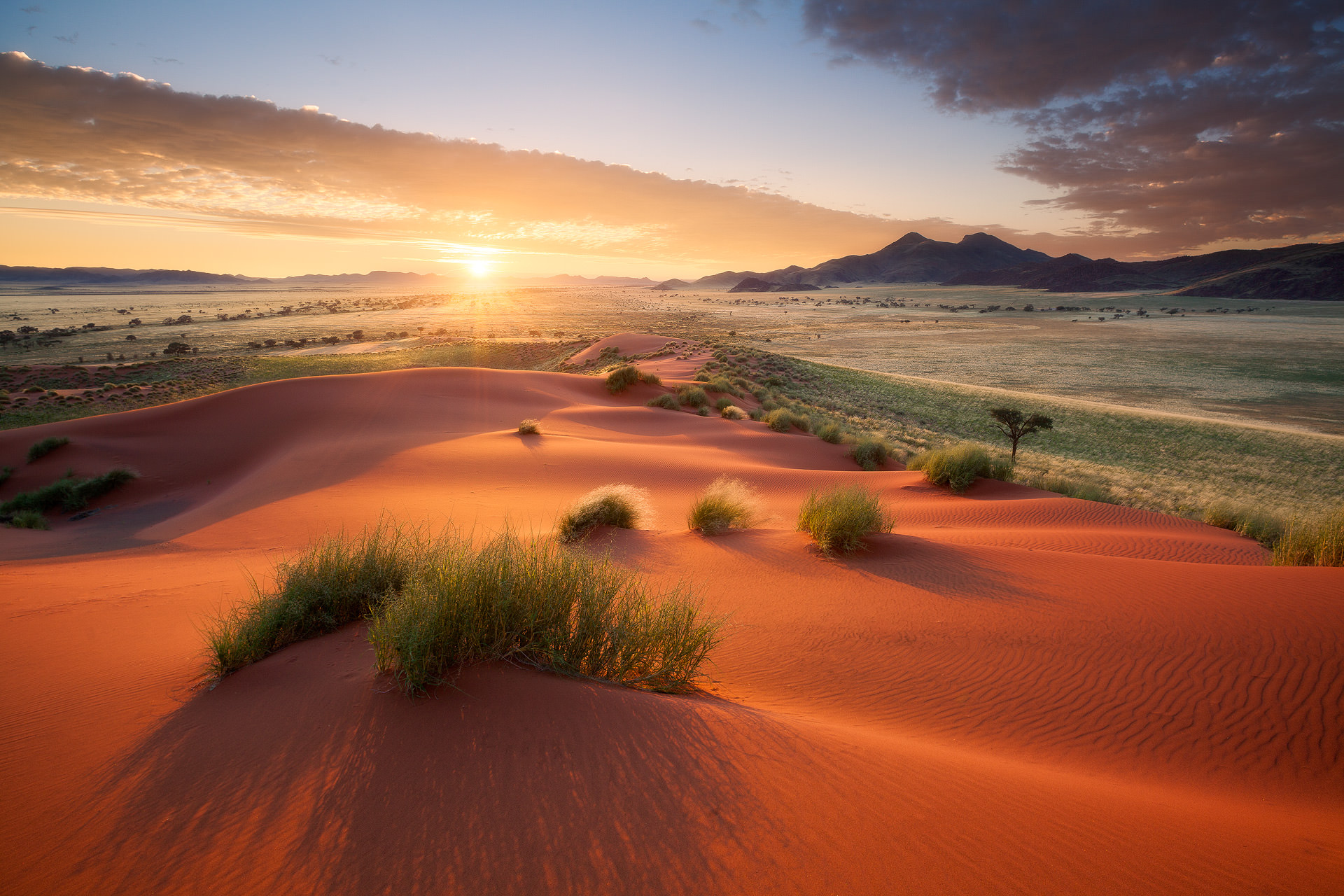 11 Day Namibia Photography Tour