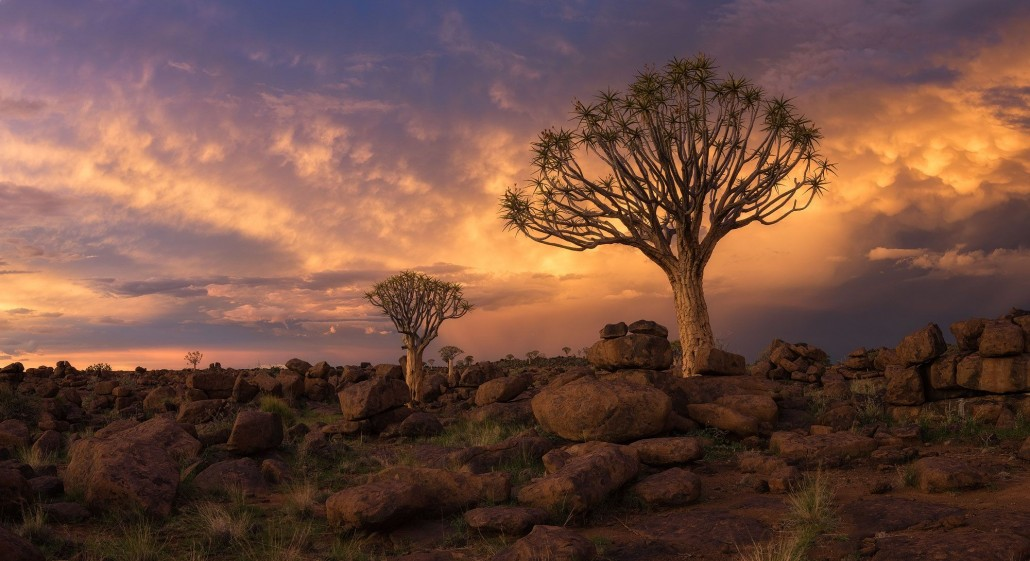 11 Day Namibia Photography Tour - day 2