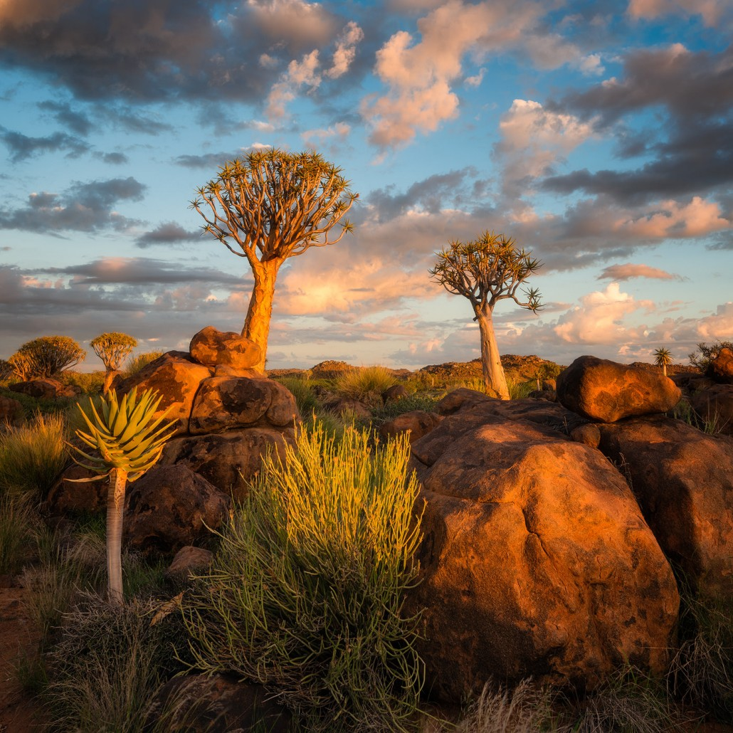 11 Day Namibia Photography Tour - day 3