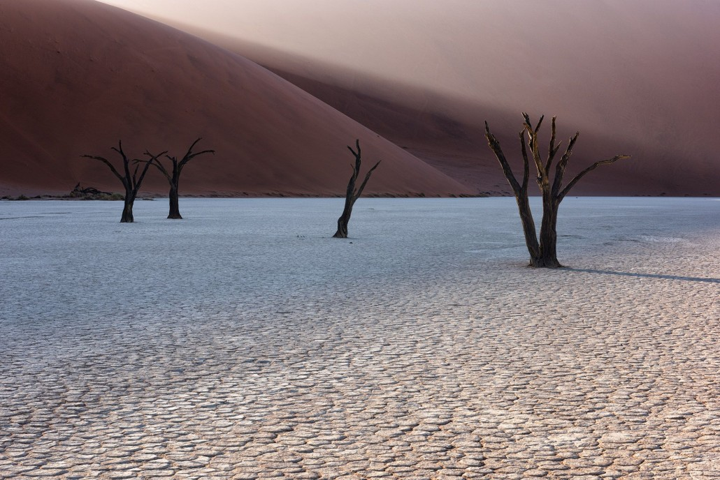 11 Day Namibia Photography Tour - day 10