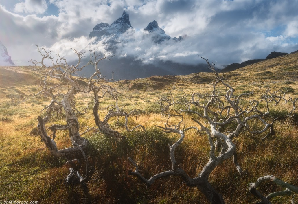 Patagonia Summer Photography Tour in Torres del Paine - day 3