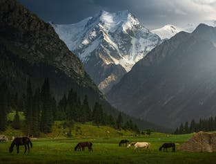 11 Day Kyrgyzstan Photography Tour width=