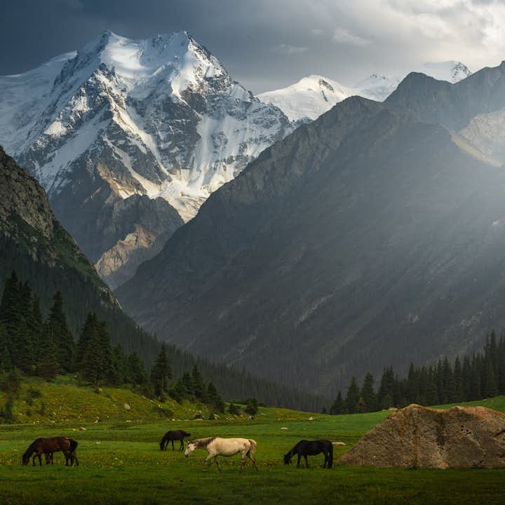 11 Day Kyrgyzstan Photography Tour