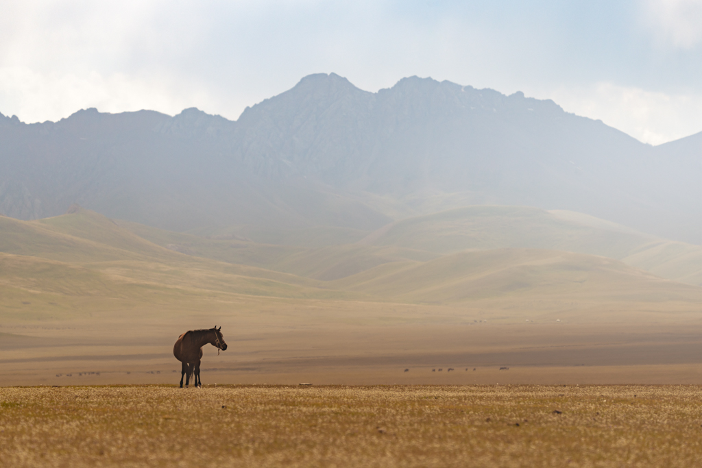 11 Day Kyrgyzstan Photography Tour - day 8