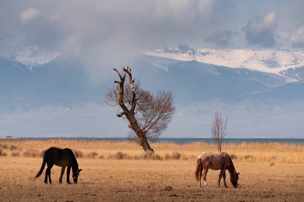 11 Day Kyrgyzstan Photography Tour - day 10