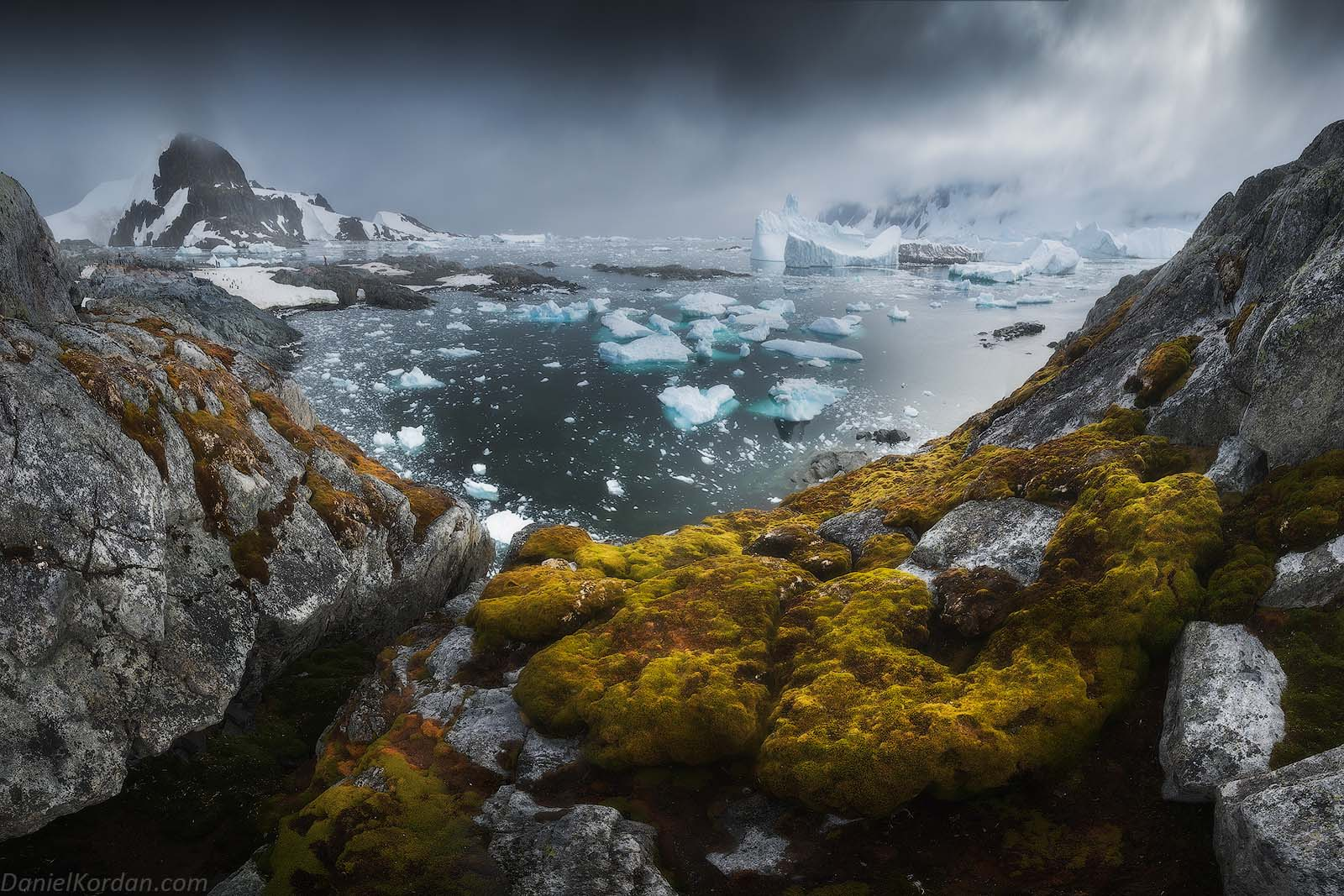 22 Day Antarctica Photography Expedition on Bark Europa - day 2