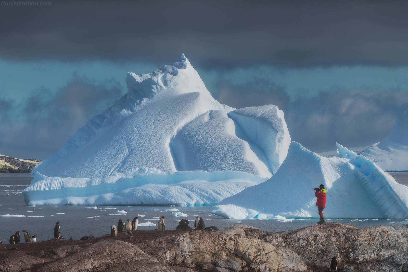 22 Day Antarctica Photography Expedition on Bark Europa - day 14