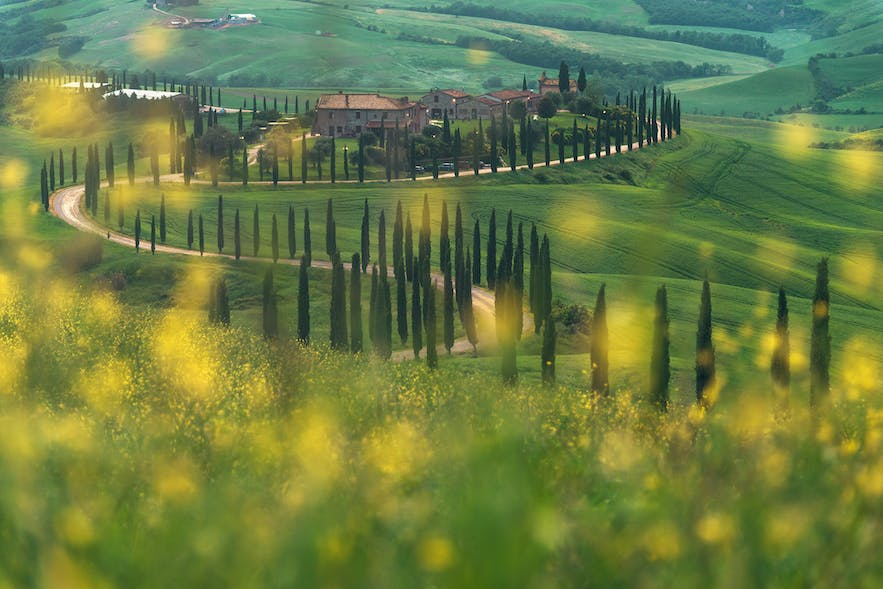 Ultimate Photography Guide to Tuscany