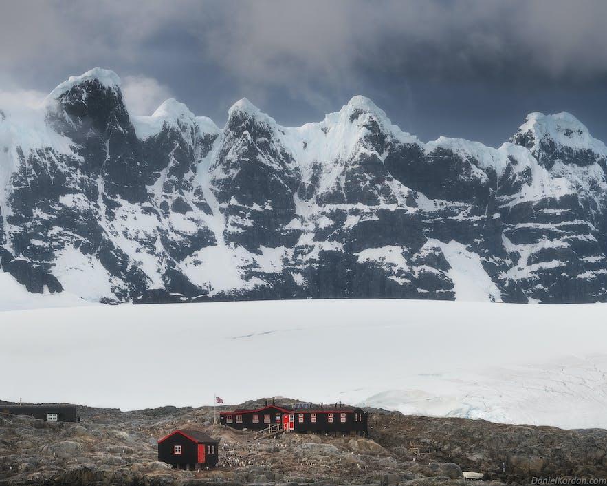 Few animals can survive on Antarctica.