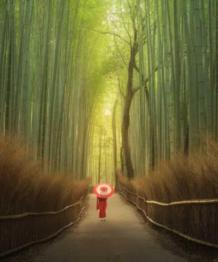 Japan Photography Tours & Workshops