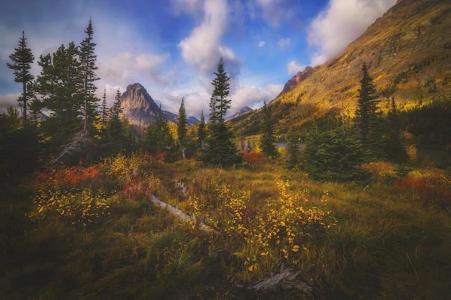 Interview with Peter Coskun