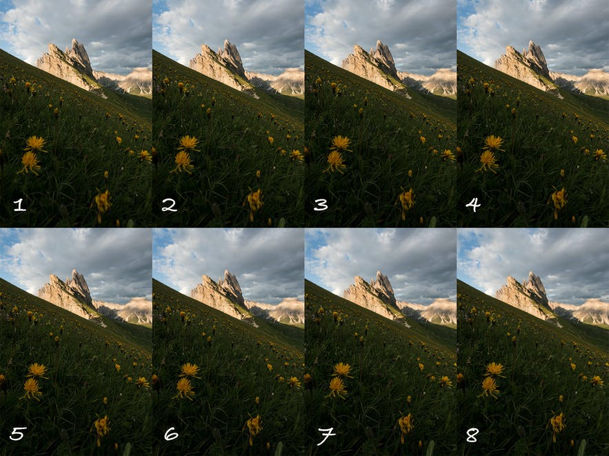 Ultimate Guide to Focus Stacking