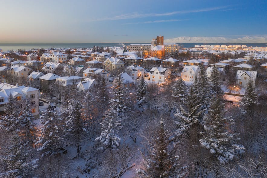 A snow-covered forest foreshadows an Icelandic cityscape - Iceland Photography | Everything You Need To Know