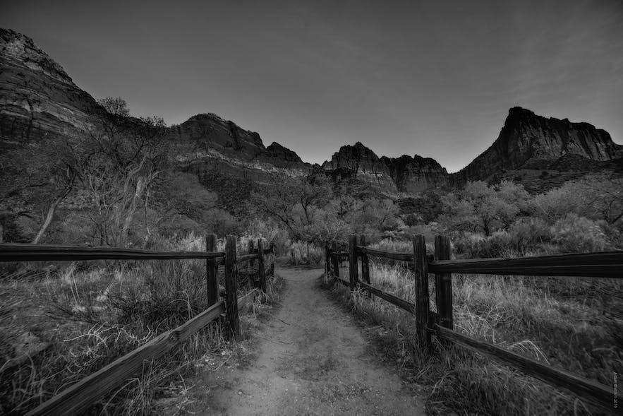 Ultimate Guide to Black and White Photography