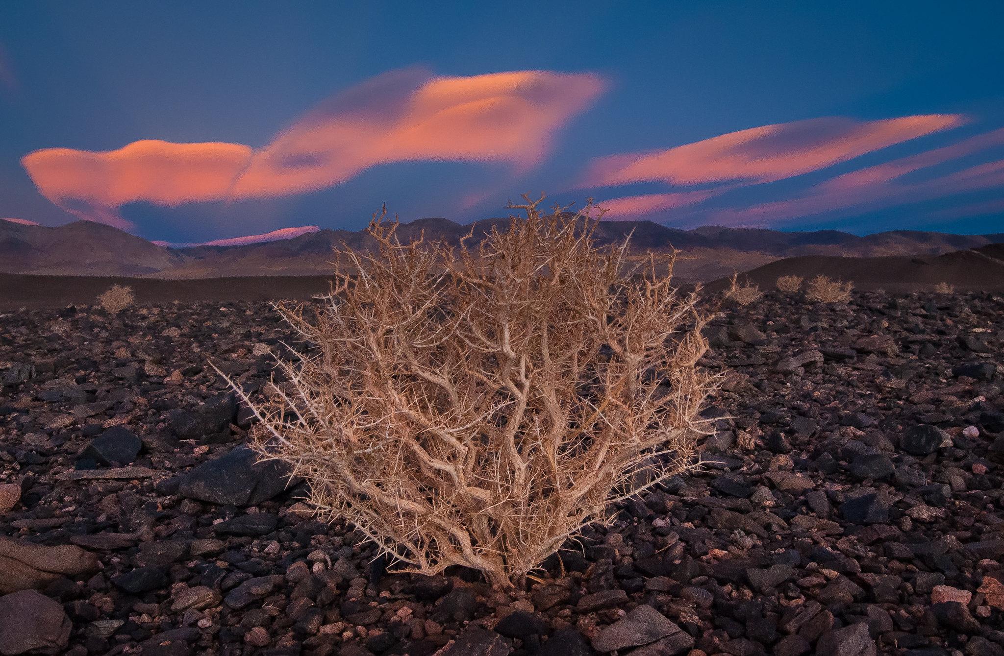 10 Day Puna de Atacama Photography Tour - day 7