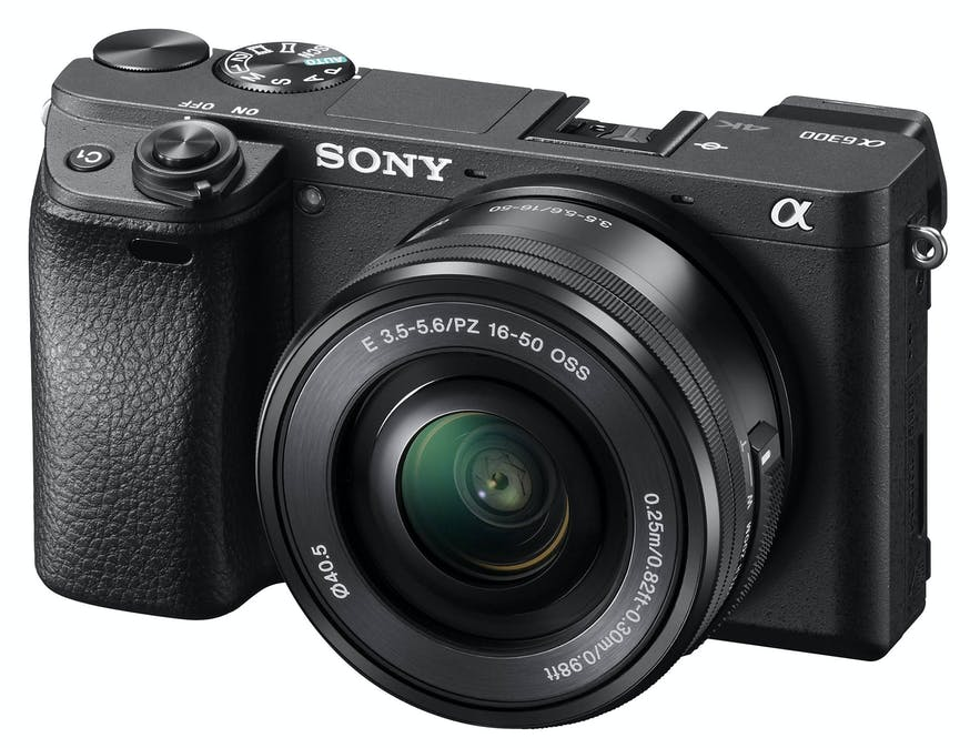 Best Cameras for Beginners in 2020