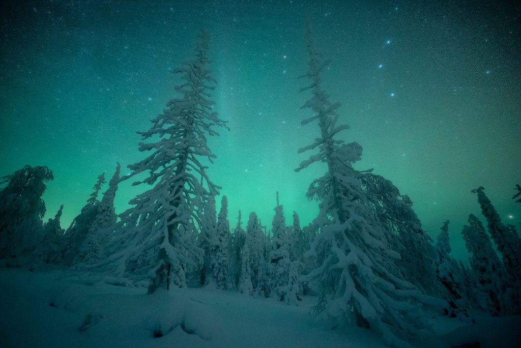 7 Day Finnish Lapland Photo Tour - day 1