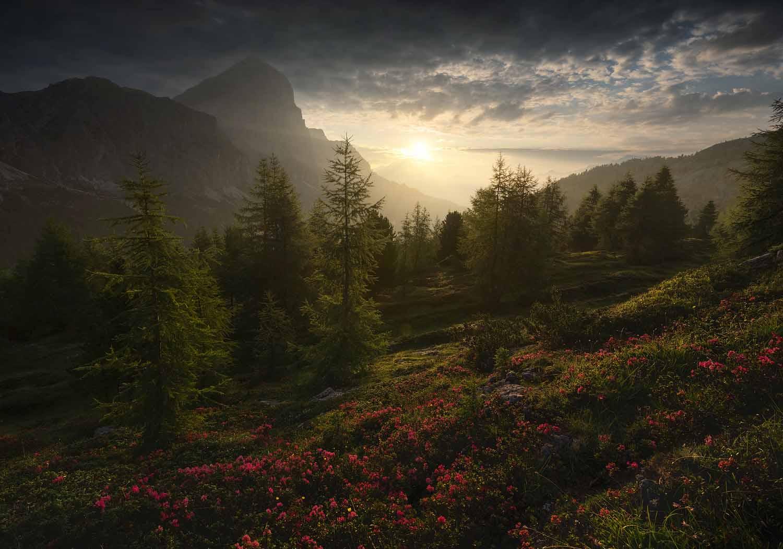 Summer in Dolomites   7 Day Photo Workshop - day 4