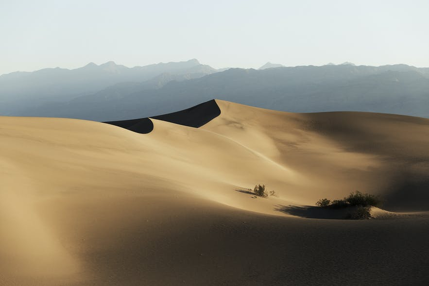 Ultimate Guide to Desert Photography