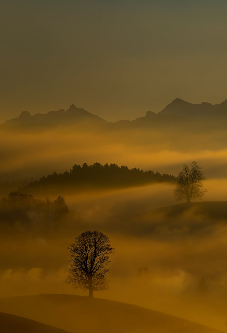 How to Improve Your Fog Photography (10 Easy Tips)