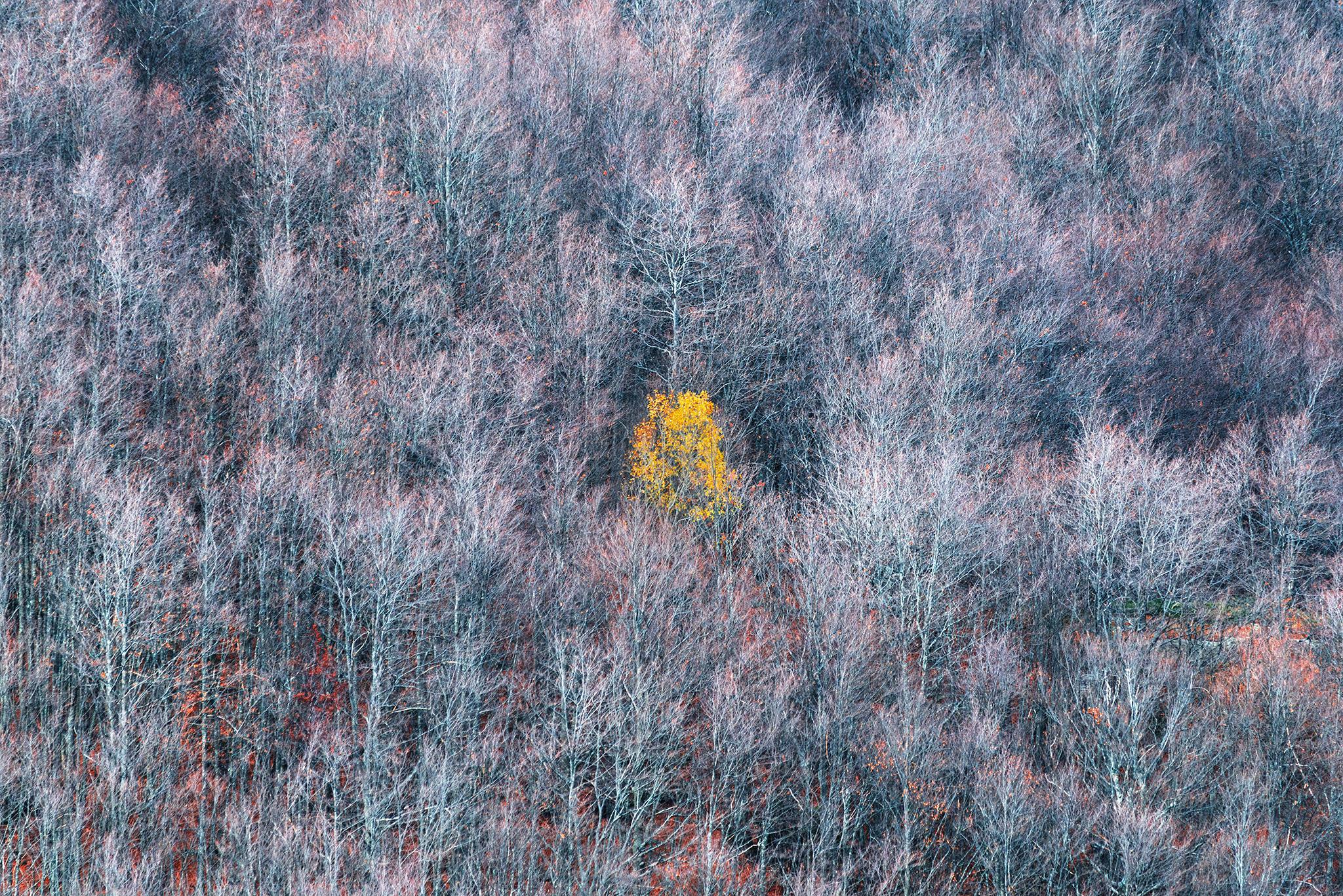 How to Take Landscape Photographs That Evoke Emotion