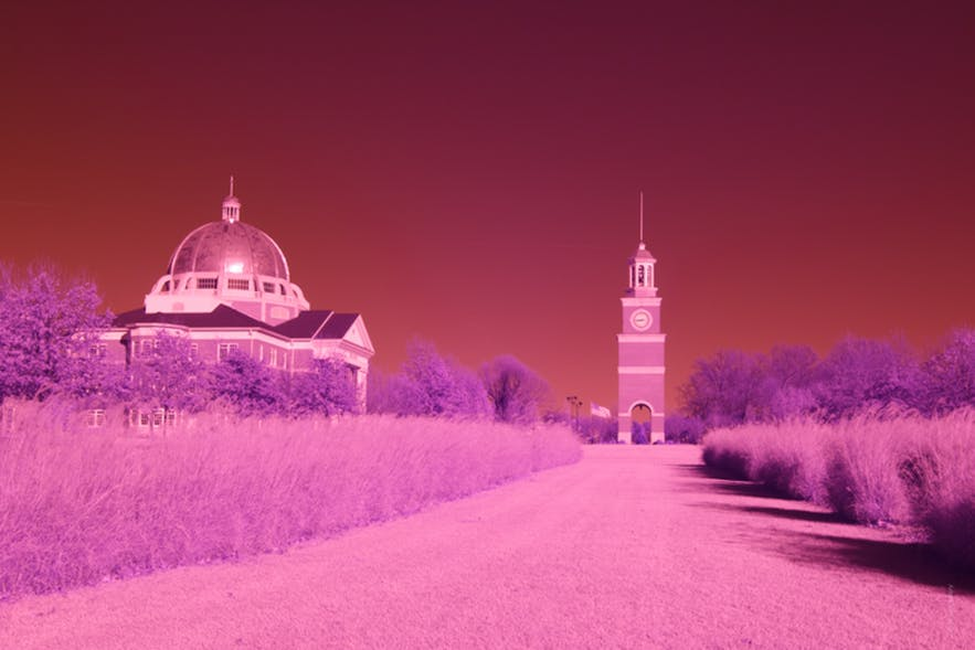 Beginner's Guide to Infrared Photography
