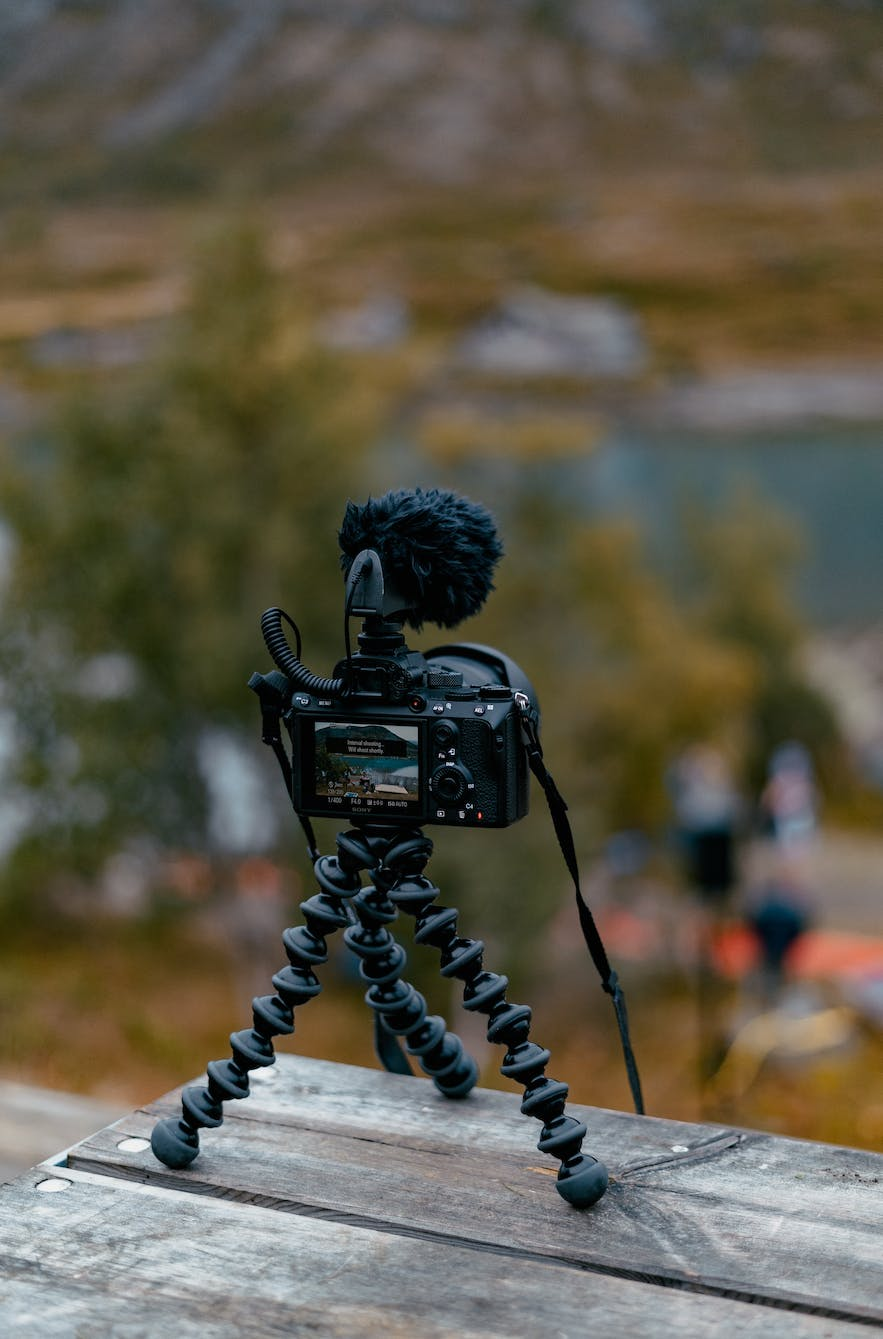 Best Tripods for Photography